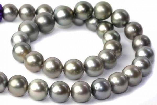 Choker 11,2-13mm/40,5cm, Tahiti Perle grau 35pcs
