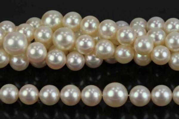 Perlenstrang 5,5-8,5mm/46cm, Akoya Perle AA weiß